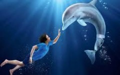"""Dolphin Tale"", the Series of Films"