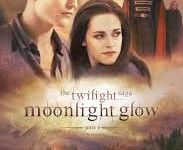 Twilight: Fact and Fiction