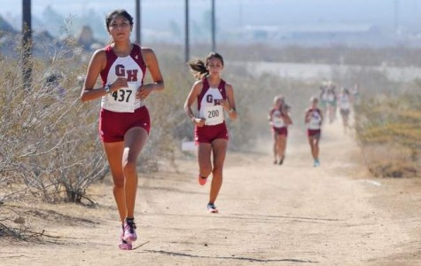 Cougars Dominate in Cross Country