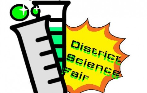 The AVUSD Science Fair!