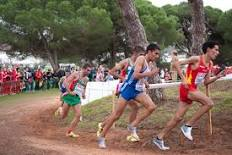 Granite Hills sweeps 2nd DSL Cross Country Meet: from VVdailypress.com